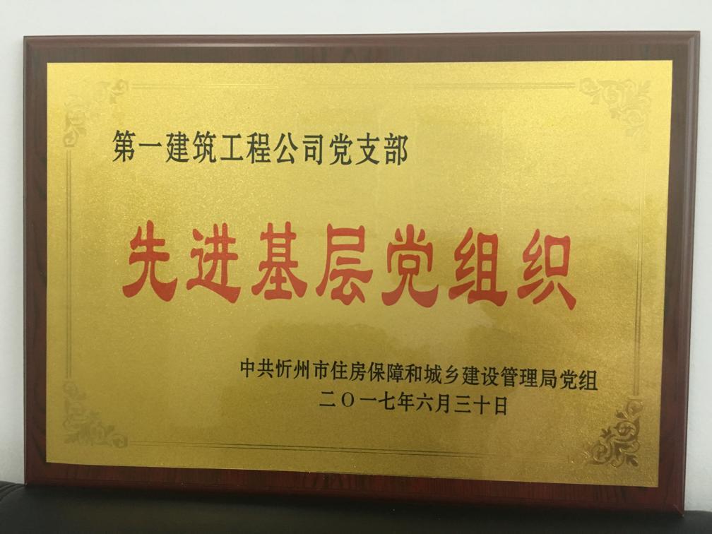 """公司黨支部榮獲""""先進基層黨組織""""殊榮"""